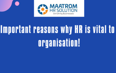 5 Important reasons why HR is vital to an organisation!